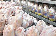 قیمت محصولات پروتئینی در بازار/قیمت ماهی وارداتی دو برابر داخلی است