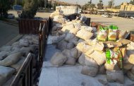کشف بیش از ۷ تن برنج قاچاق در کرمانشاه