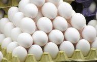 تخم مرغ ارزان شد/صادرات روزانه ۱۵۰ تن تخم مرغ به بازارهای هدف