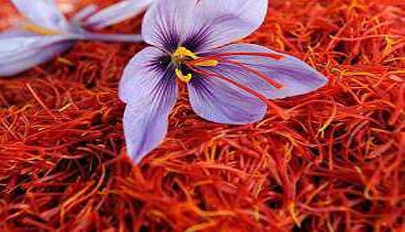 صادرات زعفران به بیش از ۱۳۲ تن رسید/حداکثر نرخ هر کیلو طلای سرخ ۹ میلیون و ۵۰۰ هزار تومان