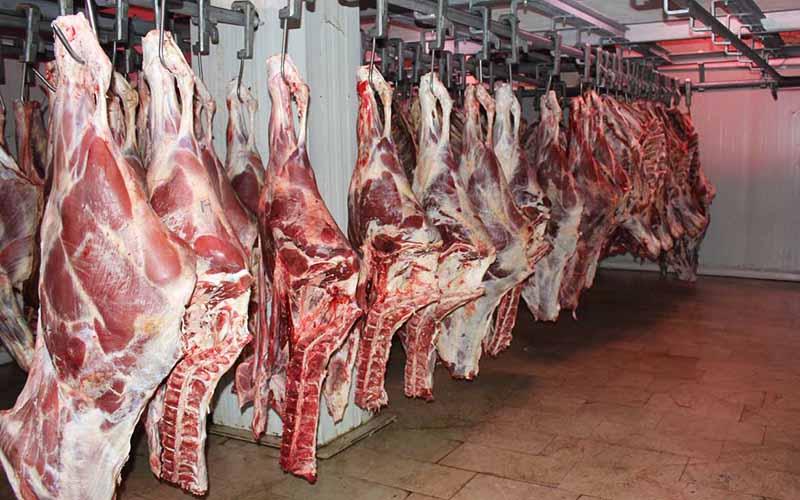 ۲۳ هزار تن گوشت قرمز امسال در استان کرمانشاه تولید شد
