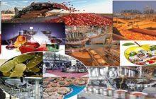 تمایل آلمان برای همکاری با ایران در حوزه صنایع غذایی