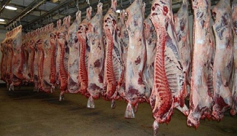اُفت لاک پشتی قیمت گوشت با وجود ازدیاد دام در بازار/ واسطهها سدی در برابر ارزانی!