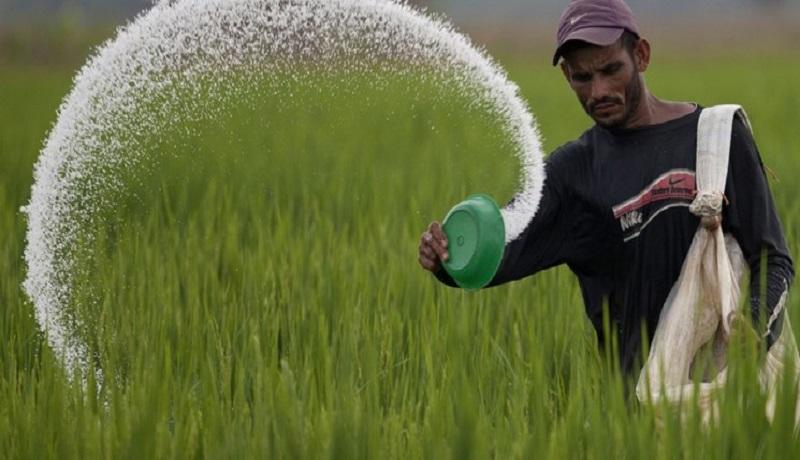یارانه کودهای شیمیایی به مقصد نمی رسد/ ارز 4200 بلای تولید نهاده کشاورزی در کشور