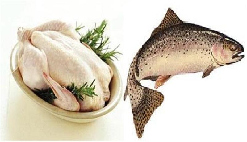 مرغ ارزان شد/قیمت هر کیلو ماهی سالمون نروژ ۱۷۵ هزار تومان