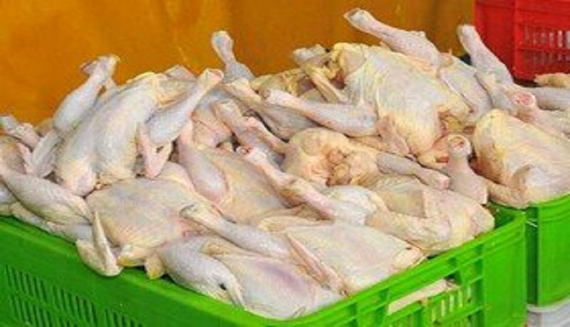 نوسان ۳۰۰ تومانی نرخ مرغ در بازار/ نیازی به واردات مرغ نداریم