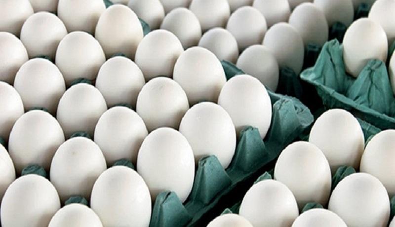 صادرات ۲۷ هزار تن تخممرغ به کشورهای حاشیه خلیج فارس