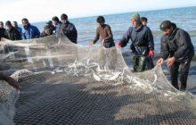 آغاز فصل صید با تورهای محروم از ماهی صیادان گیلانی